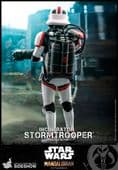 Hot Toys TMS012 The Mandalorian Incinerator Stormtrooper 1/6 Scale Collectable Figure